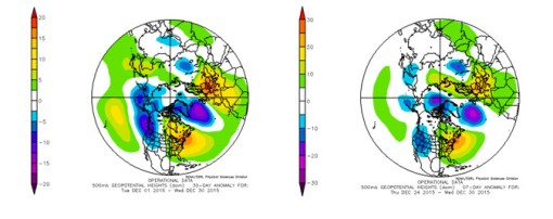Circulation anomalies in the middle troposphere for 1-30 and 24-30 December