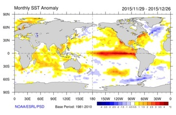 Latest monthly anomalies in sea surface temperatures showing the strong El Nino lying along the equator, the warmth of the north-east Pacific and western Atlantic and the colder than normal ocean temperatures of the northern North Atlantic