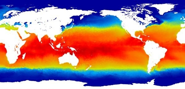 global sea surface temperature from the Met Office OSTIA analysis