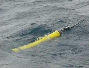 An Argo float