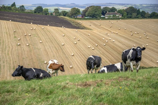 Arable and livestock farming are essential to the UK
